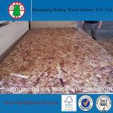 Raad OSB van de Goede Kwaliteit van de Prijs van de fabriek de Goedkope