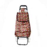 Shelf d'acciaio Trolley Bag per Shopping