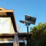 Réverbère solaire élégant de la lumière DEL de jardin de Bluesmart avec le panneau solaire