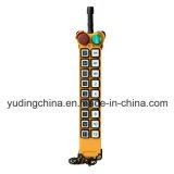 Le récepteur sans fil d'émetteur de l'approvisionnement F21-18s d'usine, homologation de FCC de la CE, tendent le cou à télécommande