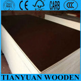 First Grade 18mm Film Faced Plywood for Building Material/Shuttering Plywood