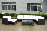 خارجيّة [ويكر] أثاث لازم/حديقة ركب أريكة/حديثة حديقة أريكة ([سك-ب6516])
