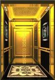Shandong Fujizy 전송자 엘리베이터