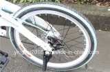 "20 "" Elctric faltendes Fahrrad   250W 36V Folded Electric Bicycle (YK-EB-011)"