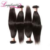Trama chinesa humana real padrão do cabelo do baixo preço melhor
