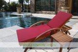 Présidence de Poolside en bois solide avec le couvre-tapis amovible (WH-D380)