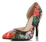 Madame aiguë Shoes (S15) de tep de talon haut neuf de modèle