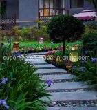 De openlucht LEIDENE van de Decoratie van het Metaal van de Decoratie van de Tuin Veilige Romantische ZonneVerlichting van het Glas