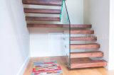 Projeto de madeira da escadaria da etapa das escadas de Villar