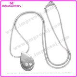 Wasser-Absinken-Stahlurne-hängende Halskette für Aschen-Andenken mit der Tatze (IJD8029)
