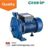 110V/220V 단일 위상 전력 청결한 원심 수도 펌프