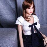 женщины китайца 165cm с малыми куклами взрослого силикона Breadt