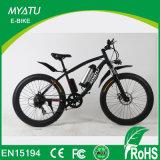 bici eléctrica gorda de 36V/48V 750W Eco con la batería movible 500W 16ah
