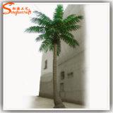 屋外のガラス繊維の人工的な擬似ココナッツプラント木