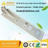 센서를 가진 LED 빛 Maunfacturer 인기 상품 30W Soalr LED 가로등
