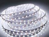intense barre flexible d'éclairage LED de bandes du luminosité 120LEDs 9.6W/M DEL de la garantie 3years