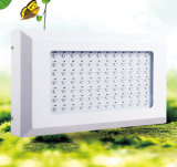 베스트셀러 252W LED는 더 높은 추수를 위해 가볍게 증가한다
