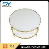 熱い販売の庭の家具のステンレス鋼の円形のコーヒーテーブル