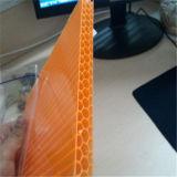 Hoja de policarbonato de nido de abeja recubierta de UV Material de construcción