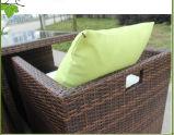Rotin extérieur de restaurant dinant les meubles réglés de canne de jardin (CF659)