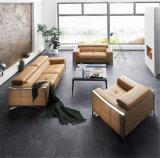 Sofá moderno com o sofá do couro genuíno/o sofá da sala de visitas projeto moderno