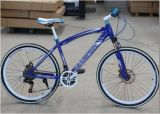CER Dame Style Beach Cruiser Bicycle (LEADER-JS009)