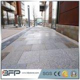 道の経路のための正方形の敷石の一致させたスレートの石