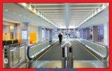 Aeropuerto Sately y útil Moving Sale caliente Calzada