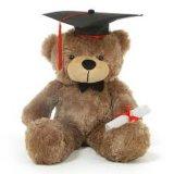 Graduatie GLB & het Stuk speelgoed van de Pluche van de Teddybeer van de Toga