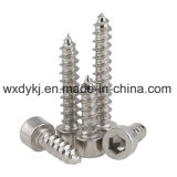 Nickel überzogene Kontaktbuchse-Schutzkappen-selbstschneidende Maschinen-Schraube