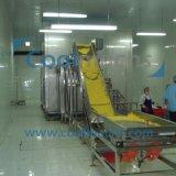 IQF Typ schnelle Gefrierausrüstung-Maschinen-Nahrungsmitteltiefkühlverfahren-Maschine
