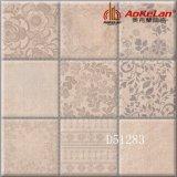 Wohnzimmer-Schaukasten-Entwurfs-Matt glasig-glänzende rustikale keramische Fußboden-Fliese