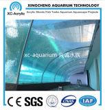 Serbatoio di pesci acrilico libero dell'acquario del prezzo sottomarino di progetto del mondo
