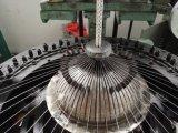 O laço prova a máquina 2 da trança do laço