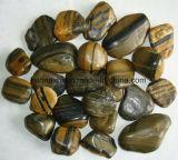 [سز2.5-5كم] عال يصقل نمو جلد حصاة حجارة لأنّ حديقة يرتّب