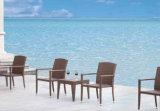 أثاث لازم خارجيّة ألومنيوم [رتّن] كرسي تثبيت [رتّن] طاولة