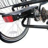 Btn 2017 성인을%s 전기 자전거 세발자전거