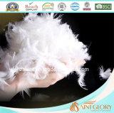 Pato blanco al por mayor del Duvet de la pluma del ganso el 5% abajo el 95% abajo y consolador de la pluma