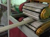 PVC 인공적인 대리석 지구 도와 플라스틱 기계 쌍둥이 나사 밀어남