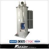 regulador de tensão montado Pólo Oil-Immersed da etapa 10kv