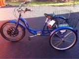 3 Bike моторизованный колесами, электрический груз Trike, электрический трицикл груза 3 с нашим мотором эпицентра деятельности
