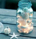 Sea Shell Enfants Décoration Chambre Micro Lumière cordes