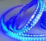 SMD5050 60LEDs RGB LEDの適用範囲が広いストリップ