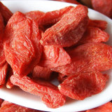 Wolfberry níspero Health Care Food Red de Goji