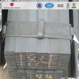 Carbonio delicato S235jr/barra piana galvanizzata Q235