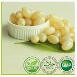 OEM etiqueta privada de Certificación Orgánica Ganoderma Lucidum polvo de esporas cápsula suave