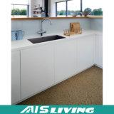 Mobília pequena dos gabinetes de cozinha do estilo clássico de Europa (AIS-K094)