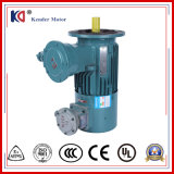Variable Frequency Drive를 가진 AC Electric Motor