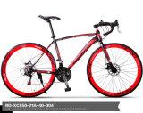 중국 공장 OEM 도로 Bicycle&Bike 제조자