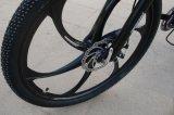 Moderner Gebirgselektrisches Fahrrad mit Scheibenbremse